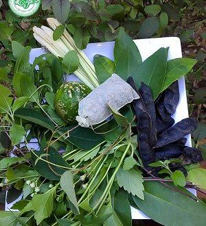 Túi lọc gội đầu chứa bồ kết, cỏ mần trầu, hương nhu, sả... được pha trộn theo tỉ lệ phù hợp