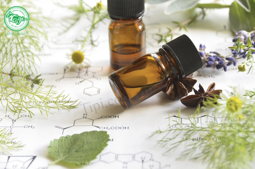 Tinh dầu nguyên chất thường được đựng trong các chai thủy tinh tối màu