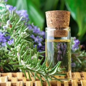 tinh dầu hương thảo 2